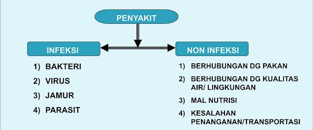 Perbedaan Penyakit Infeksi Dan Non Infeksi