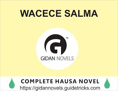 WACECE SALMA COMPLETE HAUSA NOVEL