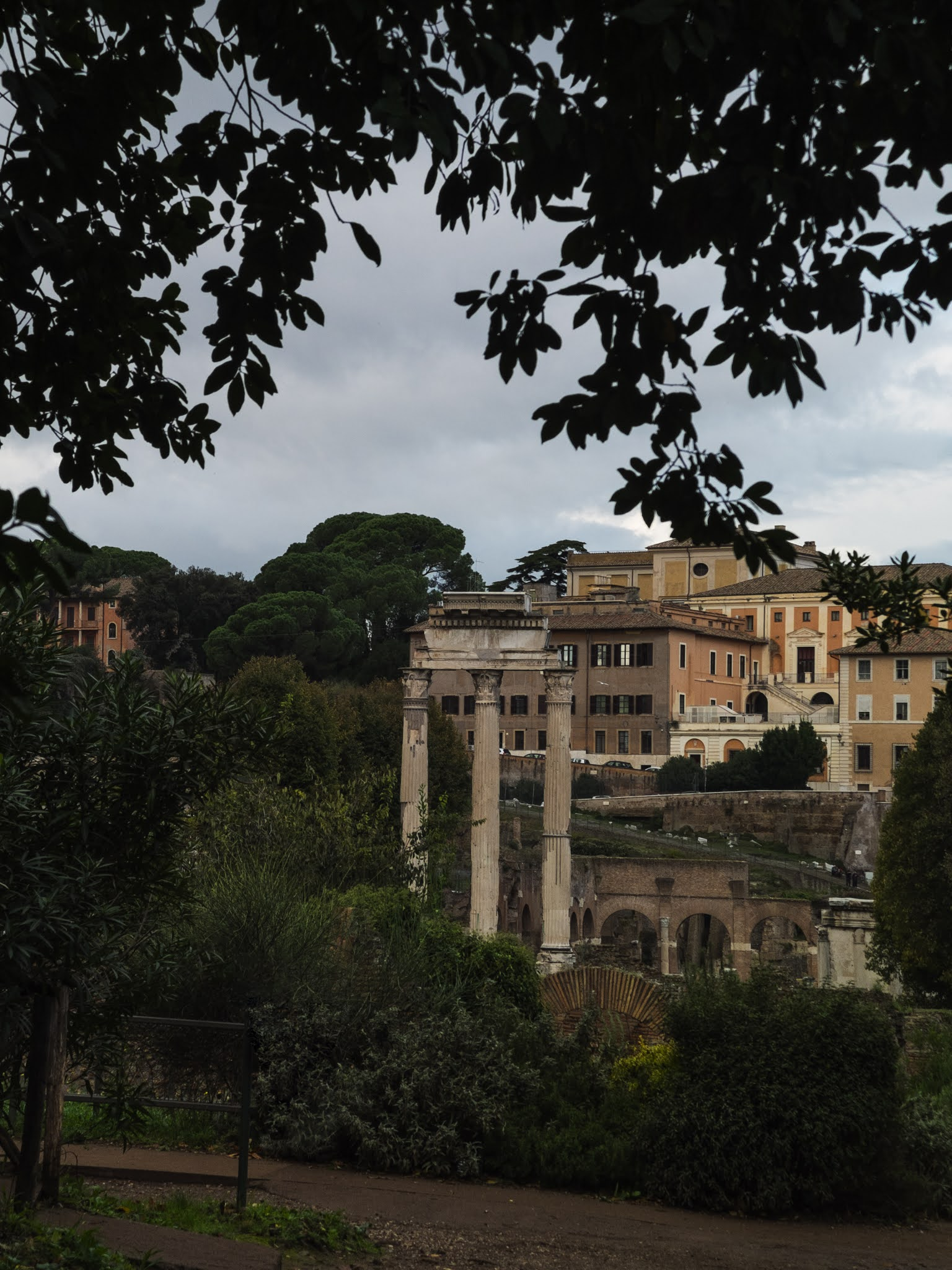 View of the Temple of Castor and Pollux in the Roman Forum from the Palatine Hill surrounded by trees.