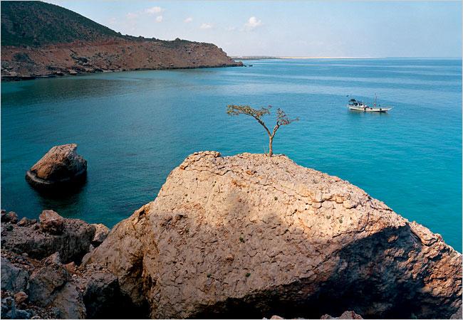 Soukatra Island Soukatra Island جزيرة سقطرى