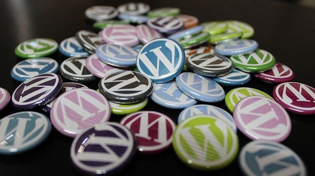 Why wordpress is used in more than 30% of websites ?