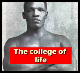 The college of life
