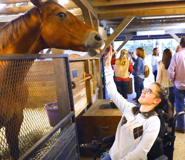 A brown horse stands with its head sticking out over a gate. Bryanna reaches up to pet his nose