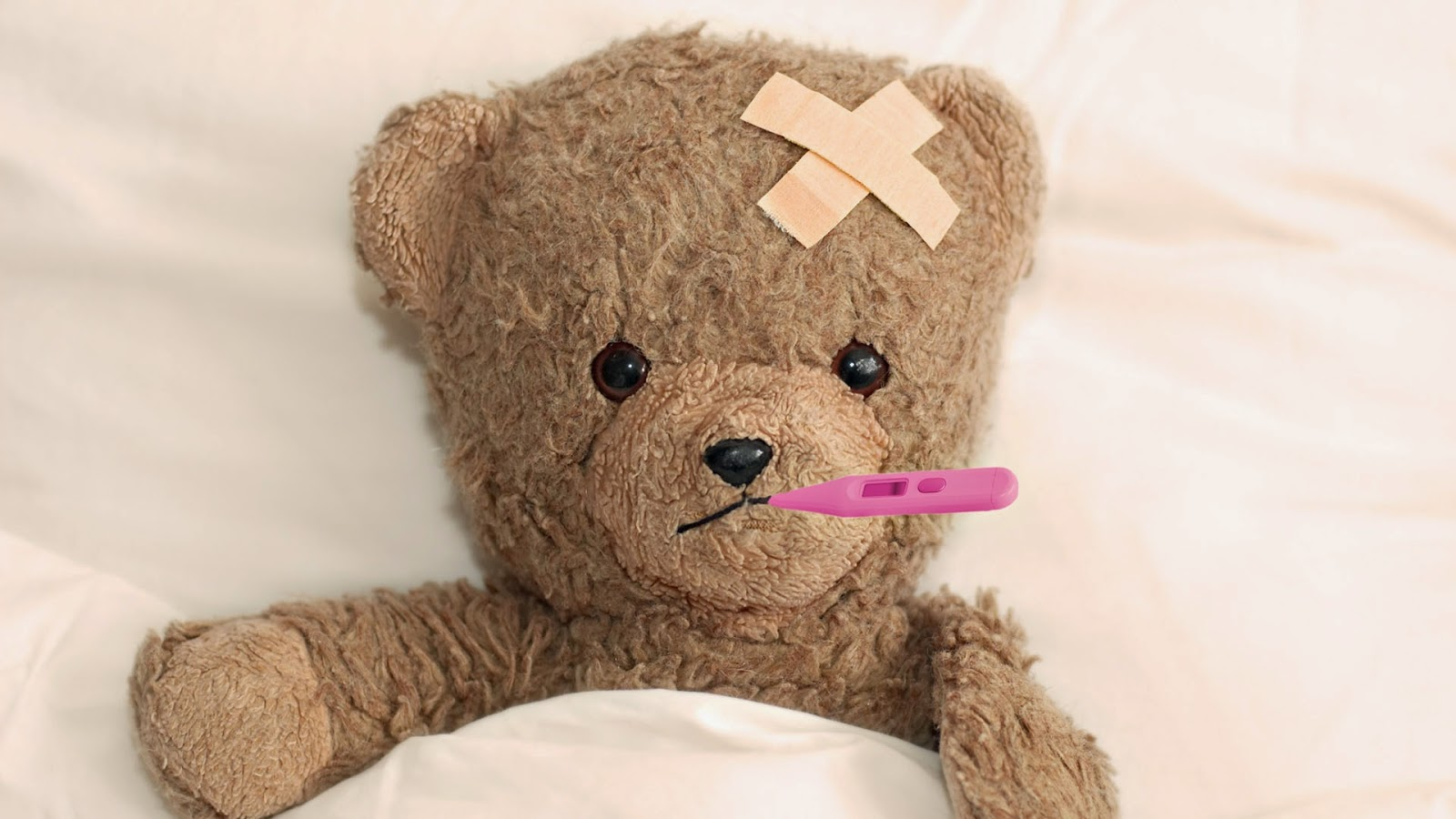 Teddy-get-well-soon-image-1920x1080.jpg