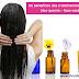 Os benefícios dos tratamentos de cabelo com óleo quente - faça você mesmo