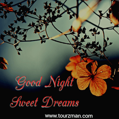 wishes good night sweet dreams photo images for friends