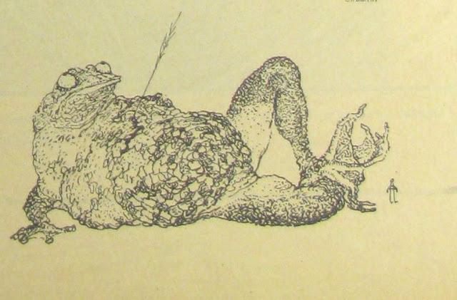 жаба карикатура