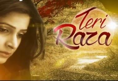 Teri Raza story, star cast TRP rating this week, actress, actors photos