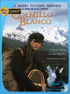 Colmillo Blanco (1991)HD [1080p] Latino [GoogleDrive] SilvestreHD