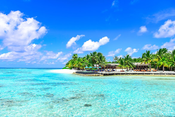 Download Beautiful HD wallpaper of blue sky ,Sea and coconut trees