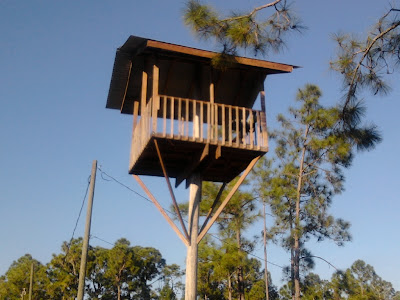 Fort A Day A One Telephone Pole Treehouse In Florida