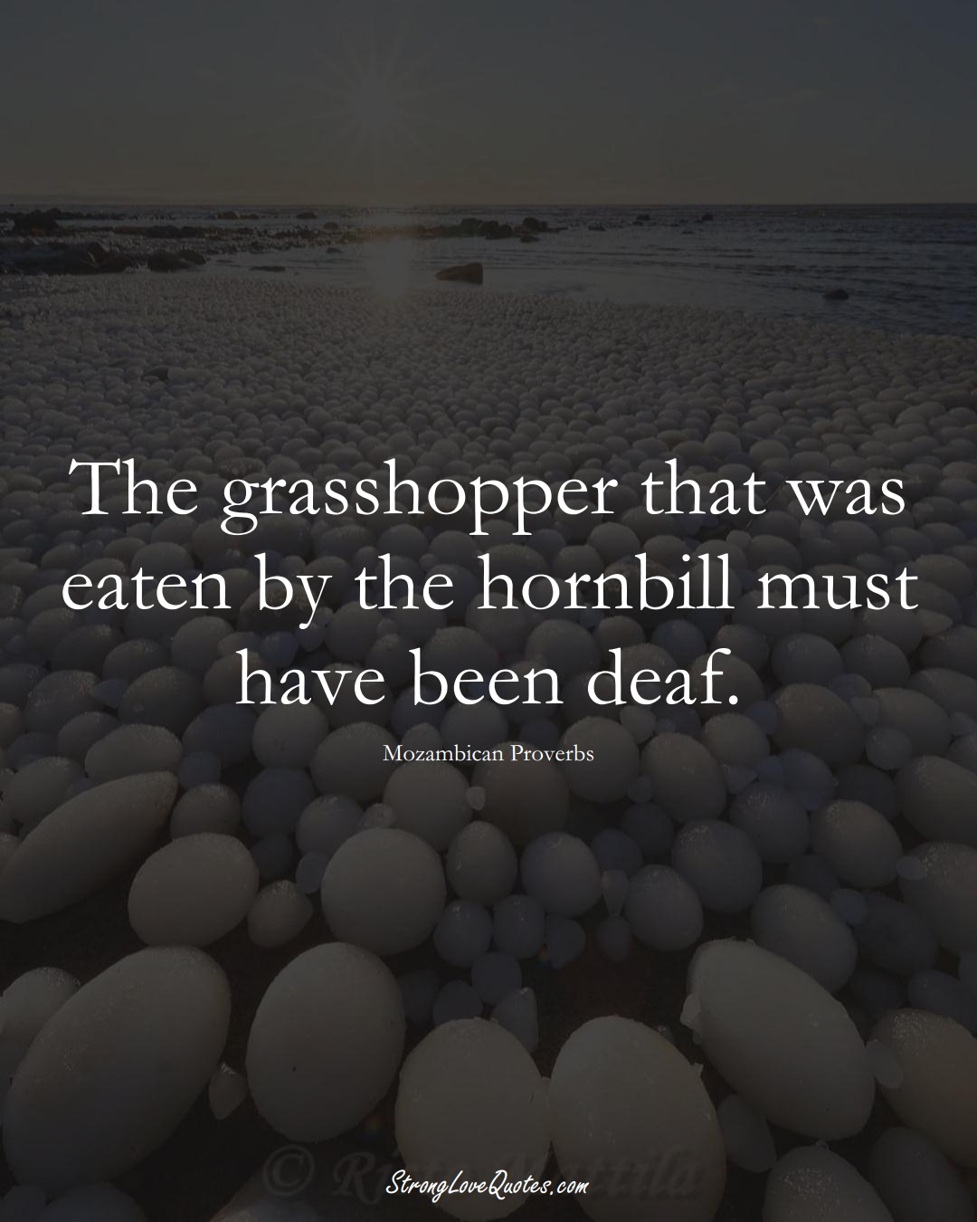The grasshopper that was eaten by the hornbill must have been deaf. (Mozambican Sayings);  #AfricanSayings