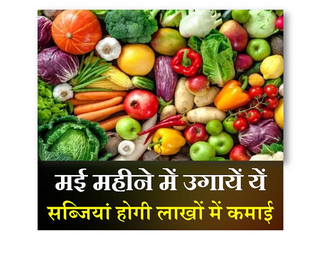 may vegetables,मई वाली सब्जियाँ,vegetables grows in may,smart business plus,vegetables,may vegetables,vegetables grow in may,vegetables grows in may,vegetable gardening,april vegetables,summer vegetables,vegetable garden,मई-जून वाली सब्जियाँ,जून में उगायें ये सब्जियां,जून बाली सब्जियां,जून में लगने वाली सब्जियां,लाखों की खेती,खेती,करों की खेती,kheti.garmiyon ki sabji,varshat me hone wali sabjiyan,मई महीने में लगाएं ये 19 सब्जियां होगी लाखों की कमाई