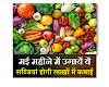 May vegetables-मई महीने में शुरू करें इन सब्जियों की बुआई होगी लाखों में कमाई-SmartBusinessPlus