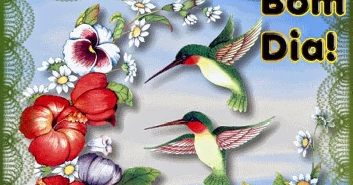 Mensagens Com Flores De Bom Dia: Flores E Frases: BOM DIA