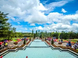 5 Tempat Wisata di Bogor yang Wajib Didatangi