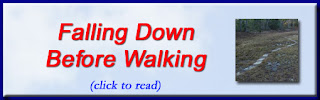 http://mindbodythoughts.blogspot.com/2016/01/falling-down-before-you-learn-to-walk.html