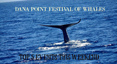 Dana Point Festival of Whales: Top 5 Events This Weekend | @FestivalofWhales