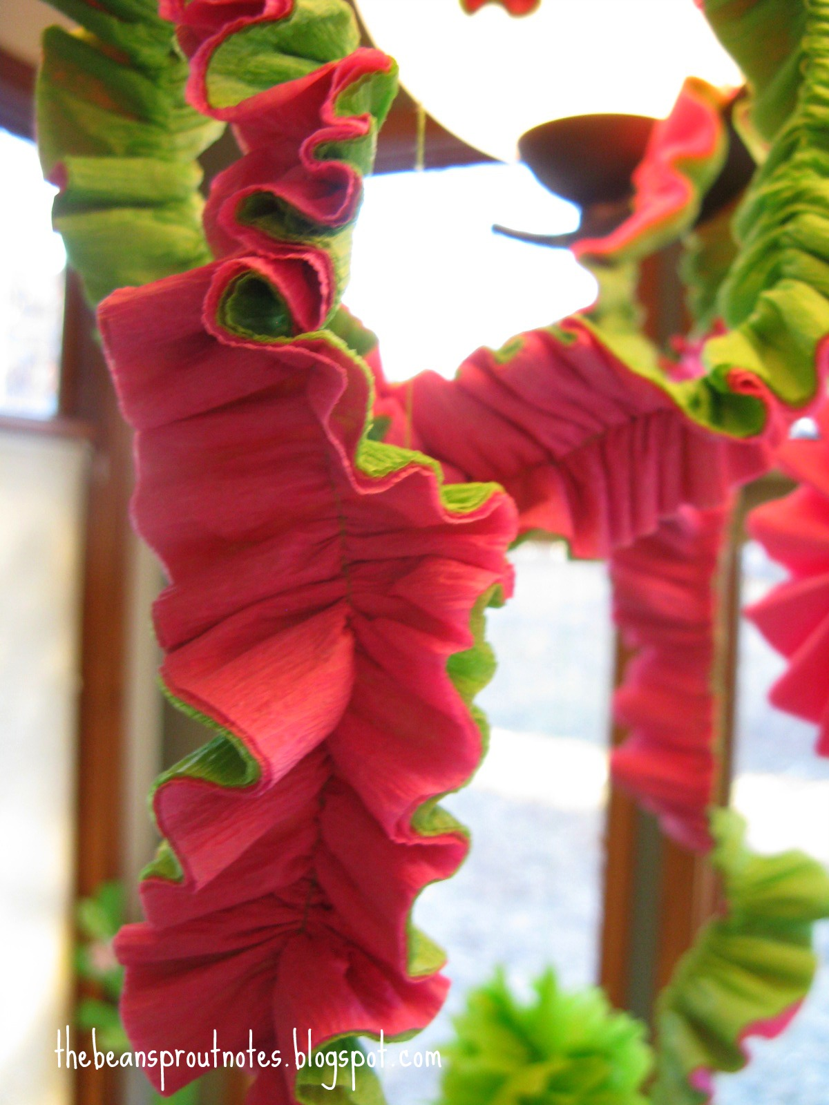 The Bean Sprout Notes Crepe Paper Party Garland