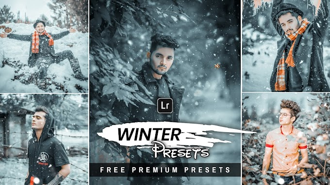 Winter Tone - Lightroom Mobile Presets Lightroom Premium Presets Free Download