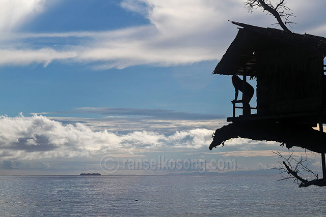 Teluk Cendrawasih; Teluk Cenderawasih; Kwatisore; Nabire; Kalilemon Dive Resort; Kalilemon; Taman Nasional Teluk Cendrawasih; Biak; Papua; Hiu Paus; Hiu; Bagan; Underwater; Foto Hiu Paus; Musim Hiu Paus; Gurano Bintang; Papua Barat; Ikan Paus; Bawah Laut; Foto Nabire; Foto Taman Nasional Cendrawasih; Foto Laut; Underwater Nabire; stock photo; culture stock photo; indonesia stock photo; indonesia photo; foto wisata; daerah wisata indonesia; tourism indonesia; amazing place indonesia; place to visit in indonesia; travel photographer; assignment for photographer; culture photo of indonesia; Indonesia Photography; Indonesia Travel Photography; Indonesia Travel Photographer; Indonesia Travel Blogger; Indonesia Travel Writer; Travel Fotografer Indonesia; Travel Blogger Indonesia; Travel Blog; Travel Photography; Landscape Photo; Culture of Indonesia; Indonesia Stock Photography; Stok Foto Indonesia; Images of Indonesia; Indonesia Photo Gallery; Tourism Indonesia; Indonesia Photostock; Backpacker Indonesia; Tempat Wisata Indonesia