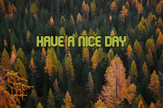 have a nice day images autumn