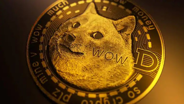What is Dogecoin and How to Invest Dogecoin in India | Price of Dogecoin