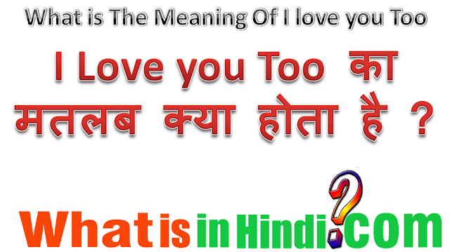 i love you too so much meaning in hindi