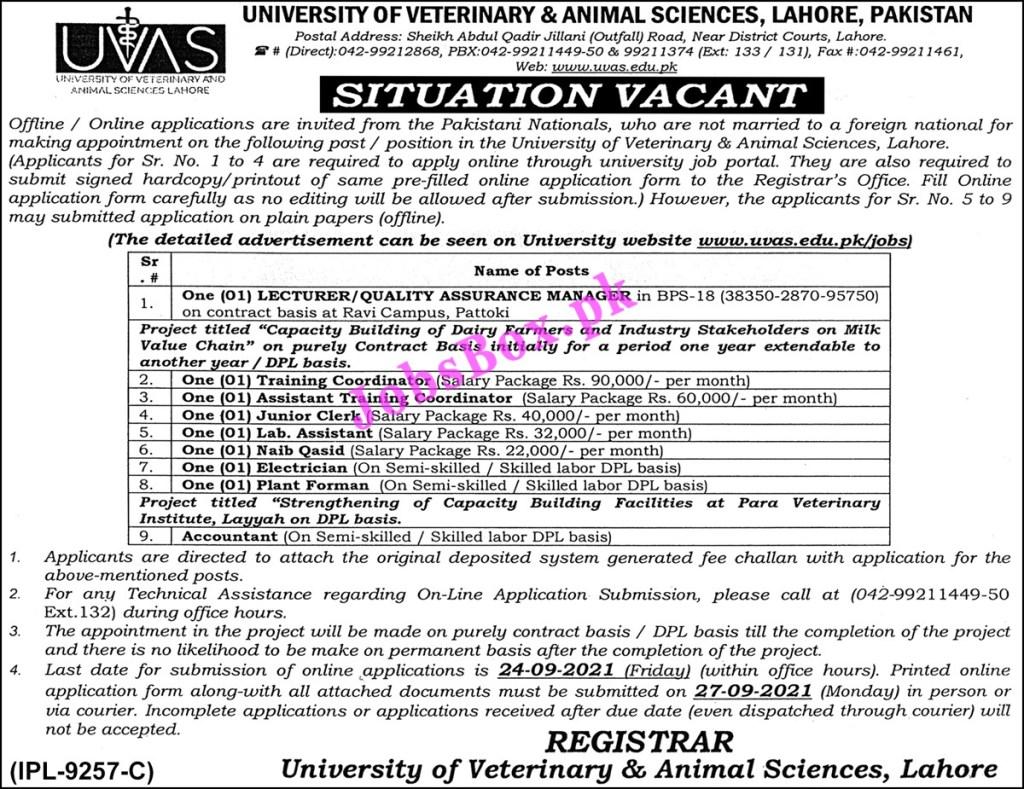 University of Veterinary and Animal Sciences UVAS Jobs 2021