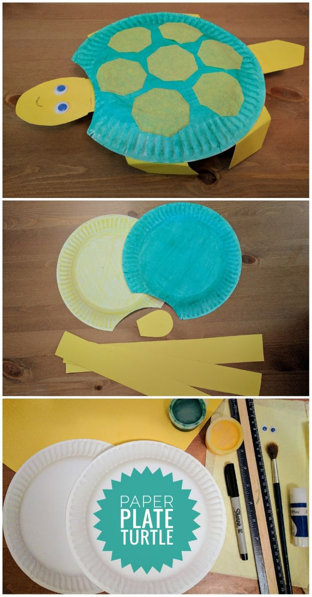 Craft for kids, Kids Craft, Turtle, Paper plate, Toddler craft, easy craft, tortoise, world turtle day