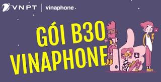 Gói B30 Vinaphone