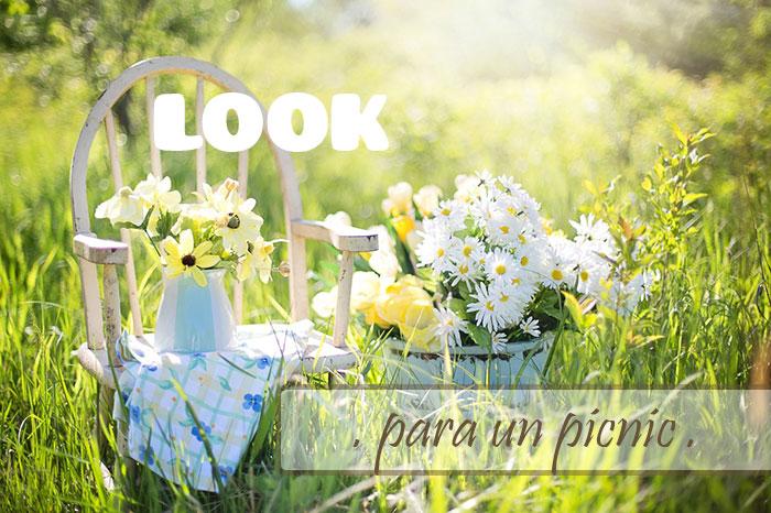 DIY look para un picnic