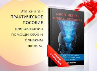 book of Nikolai Peichev multidimensional model of man