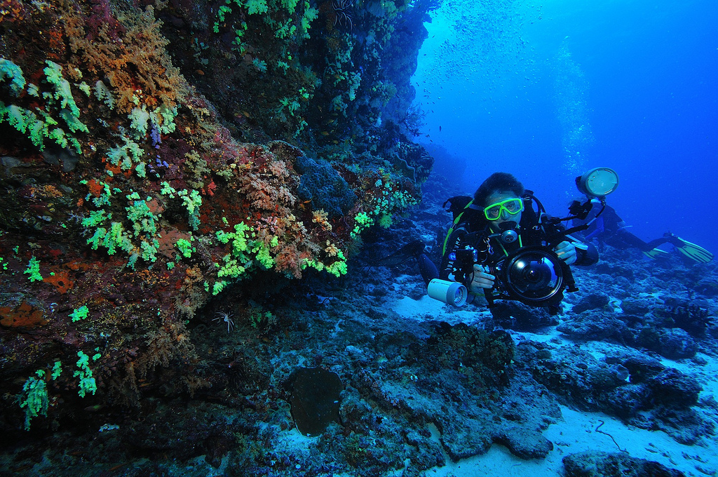 Travel Destinations Relish Your Mind By Scuba Diving In