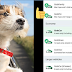 Grab is now accepting pets aboard in new app service
