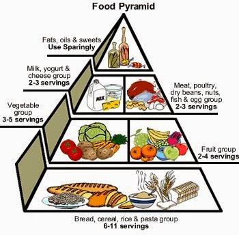 food pyramid essay writers food pyramid