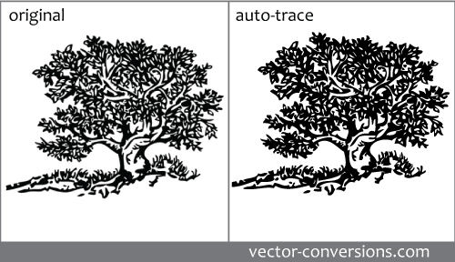 Manual Vectorization vs Automated Vector Tracing