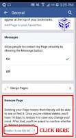 remove facebook page from personal account