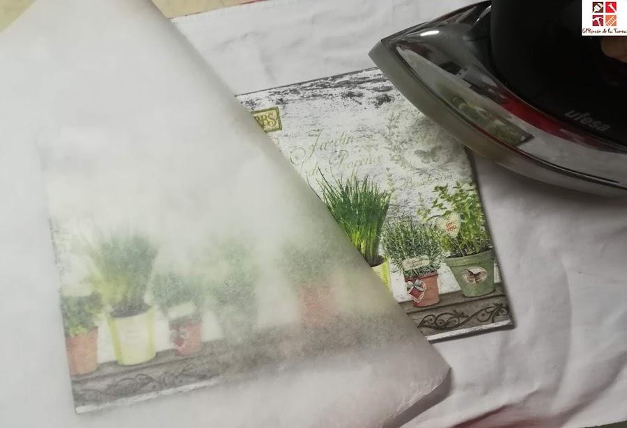 diy plantas