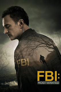 FBI Most Wanted Temporada 1