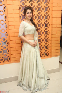 Raashi Khanan looks stunning in Crop Top Deep neck Choli Ghagra Transparent Chunni WOW ~  Exclusive Celebrities Galleries 070.JPG