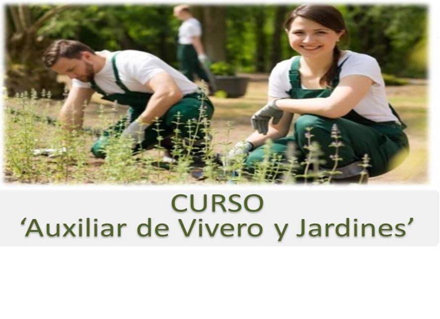 Curso gratuito de 39 auxiliar de vivero y jardines for Auxiliar de jardin de infancia