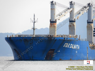 Star Dalmatia