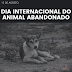 Hoje é o Dia Internacional do Animal Abandonado