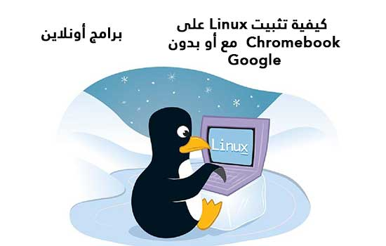 كيفية تثبيت Linux على Chromebook  مع أو بدون Google