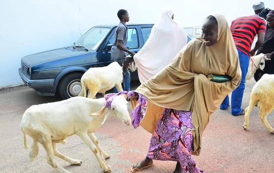 Photos: Wife of Borno State Governor Nana Shettima distributes 300 rams to widows, teachers and less priviledged