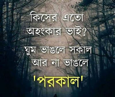 bangla shayari wallpaper ,