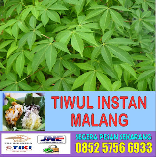 www.tiwulinstanmalang.com