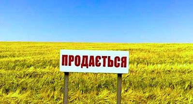 Верховна Рада ухвалила закон про продаж землі на електронних аукціонах