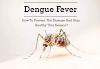 Dengue fever: Dengue symptoms & Dengue fever treatment